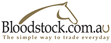 Bloodstock.com.au - The simple way to trade everyday